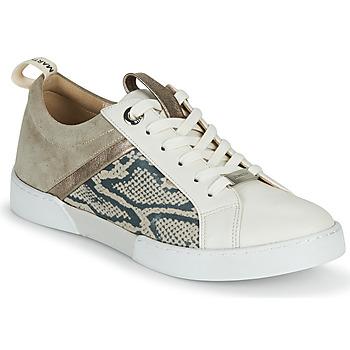 Sko Dame Lave sneakers JB Martin GELATO Grå / Hvid