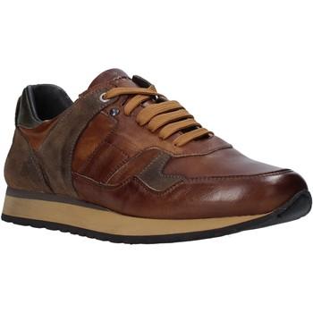Sko Herre Lave sneakers Exton 591 Brun