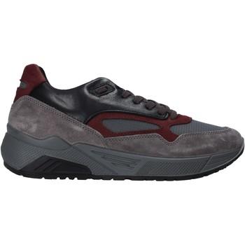 Sko Herre Lave sneakers IgI&CO 6142522 Grå