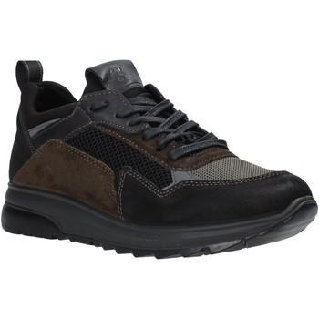 Sko Herre Lave sneakers IgI&CO 6139000 Sort