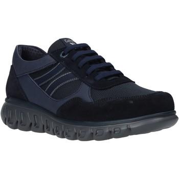 Sko Herre Lave sneakers CallagHan 12919 Blå