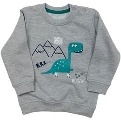 textil Børn Sweatshirts Losan 027-6652AL Grå
