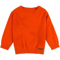 textil Børn Pullovere Losan 027-5653AL Orange