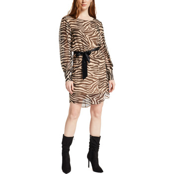 textil Dame Korte kjoler Gaudi 021FD15029 Brun