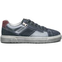 Sko Herre Lave sneakers NeroGiardini I001750U Blå