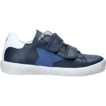 Sko Børn Lave sneakers Naturino 2015365 08 Blå