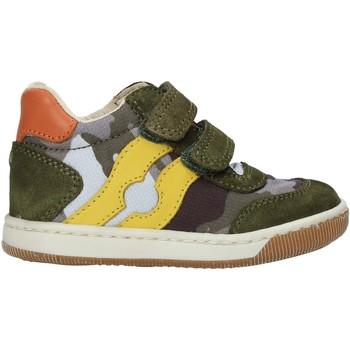 Sko Dreng Høje sneakers Falcotto 2015271 02 Grøn