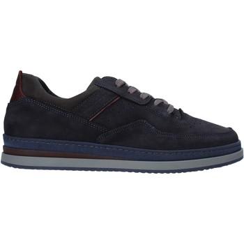 Sko Herre Lave sneakers IgI&CO 6135511 Blå