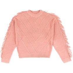 textil Børn Pullovere Losan 024-5002AL Lyserød