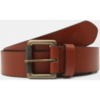 Accessories Herre Bælter Dickies South shore leather belt Brun