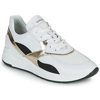 Sko Dame Lave sneakers NeroGiardini FILOMENE Hvid / Sort / Guld