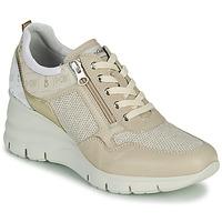 Sko Dame Lave sneakers NeroGiardini FLORA Beige / Guld