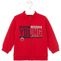 textil Børn Sweatshirts Losan 025-6651AL Rød