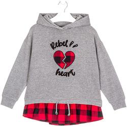 textil Børn Sweatshirts Losan 024-6012AL Grå