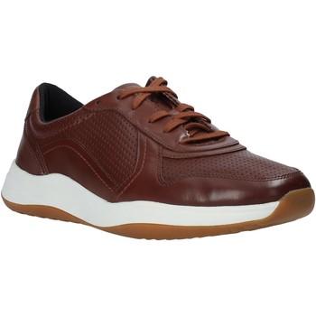 Sko Herre Lave sneakers Clarks 148125 Brun