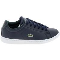 Sko Herre Lave sneakers Lacoste Carnaby C Marine Blanc Blå
