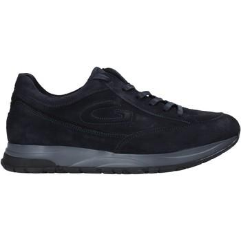 Sko Herre Lave sneakers Alberto Guardiani AGM004800 Blå