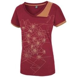textil Dame T-shirts m. korte ærmer Salewa 251661651 Kirsebær
