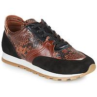 Sko Dame Lave sneakers JB Martin GLOIRE Brun