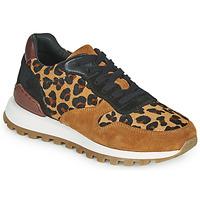Sko Dame Lave sneakers JB Martin HABILLE Brun