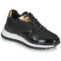 Sko Dame Lave sneakers JB Martin HABILLE Sort