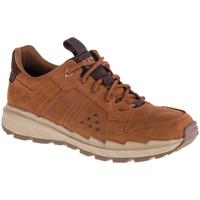 Sko Herre Lave sneakers Caterpillar Startify LO WP Brun
