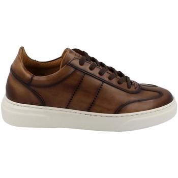 Sko Herre Lave sneakers Calce  Marrón