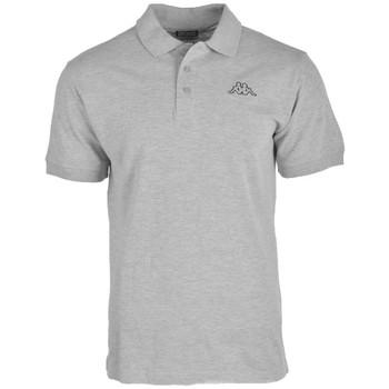 textil Herre Polo-t-shirts m. korte ærmer Kappa Peleot Polo Grå