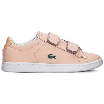 Sko Pige Lave sneakers Lacoste Carnaby Evo Strap Pink