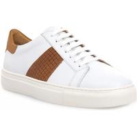 Sko Herre Lave sneakers Soldini COLORADO BIANCO CUOIO Bianco