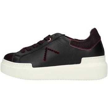 Sko Dame Lave sneakers Ed Parrish CKLDCV04 BORDEAUX