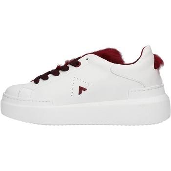 Sko Dame Lave sneakers Ed Parrish LALDMA11 WHITE
