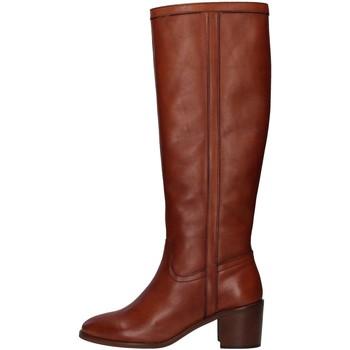 Sko Dame Chikke støvler Paola Ferri D7285 BROWN