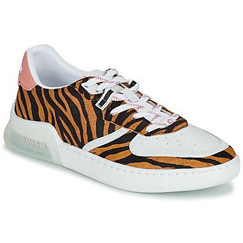 Sko Dame Lave sneakers Coach CITYSOLE COURT Flerfarvet