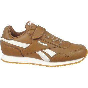 Sko Børn Lave sneakers Reebok Sport Royal Classic Jogger 3 Brun