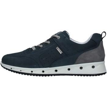 Sko Herre Lave sneakers IgI&CO 7121000 BLUE