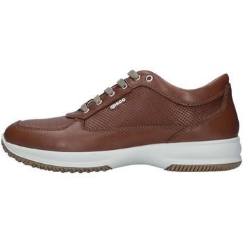 Sko Herre Lave sneakers IgI&CO 7119022 BROWN