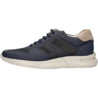 Sko Herre Lave sneakers CallagHan 91314 Blue