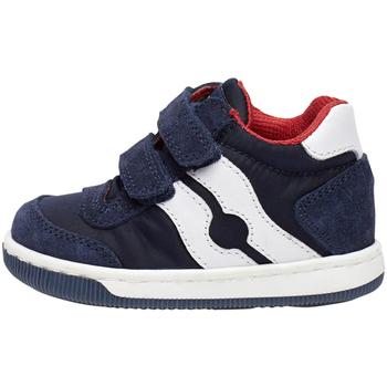Sko Børn Sneakers Falcotto 2014156 01 Blå