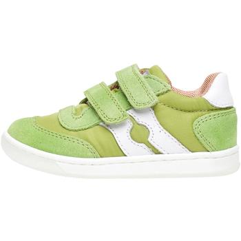 Sko Børn Lave sneakers Falcotto 2014666 01 Grøn