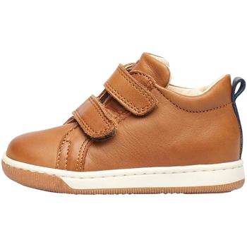 Sko Børn Sneakers Falcotto 2012869 01 Brun