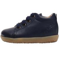 Sko Børn Sneakers Falcotto 2014581 01 Blå