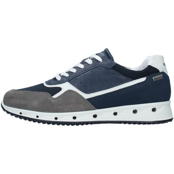 Sko Herre Lave sneakers IgI&CO 7121100 NAVY BLUE