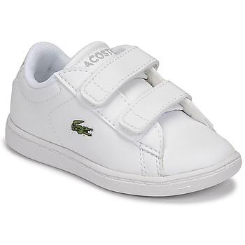 Sko Børn Lave sneakers Lacoste CARNABY EVO BL 21 1 SUI Hvid