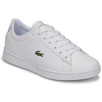 Sko Børn Lave sneakers Lacoste CARNABY EVO BL 21 1 SUJ Hvid