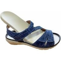 Sko Dame Sandaler Calzaturificio Loren LOQ6973blu blu