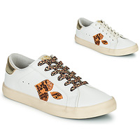 Sko Dame Lave sneakers Le Temps des Cerises AUSTIN Hvid / Guld