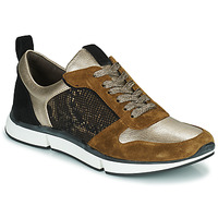 Sko Dame Lave sneakers Adige VANILLE2 V3 GALAXY ONYX Brun