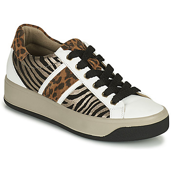 Sko Dame Lave sneakers IgI&CO DONNA AVA Hvid / Brun