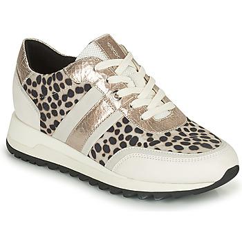 Sko Dame Lave sneakers Geox TABELYA Hvid / Sort / Sølv
